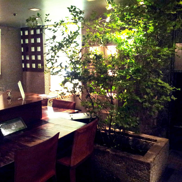 cafe.summer.jpg